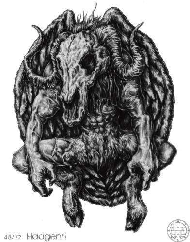 Solomon 48